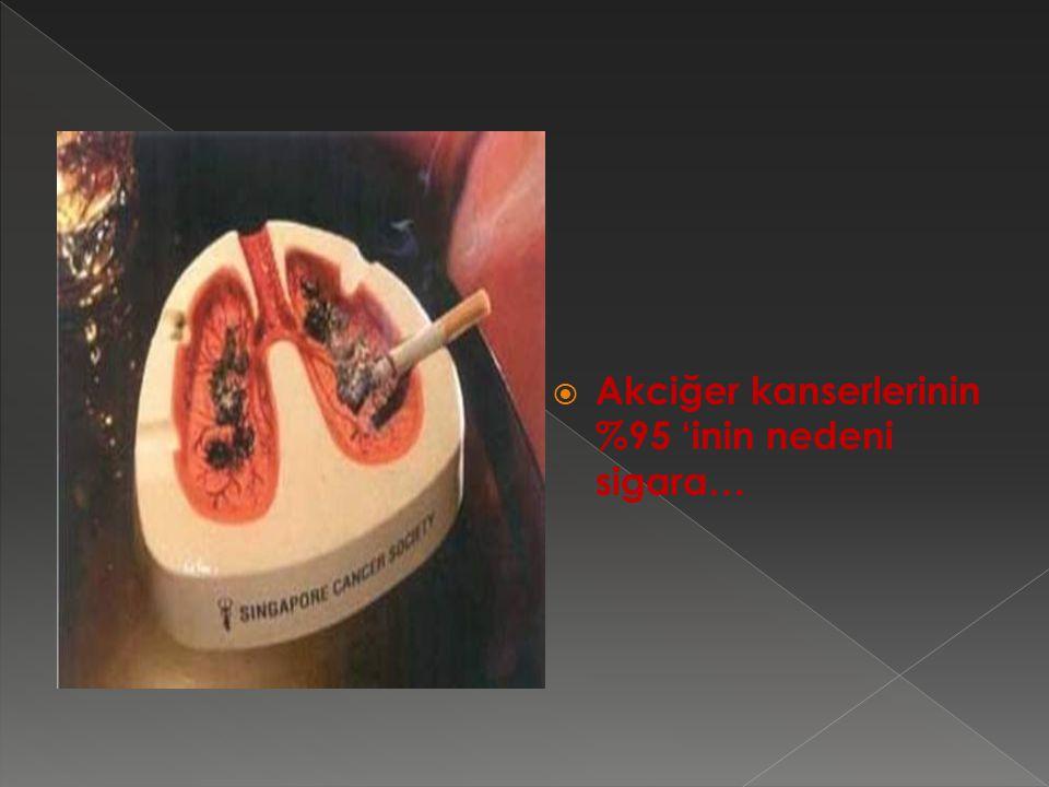 Akciğer kanserlerinin %95 'inin nedeni sigara…