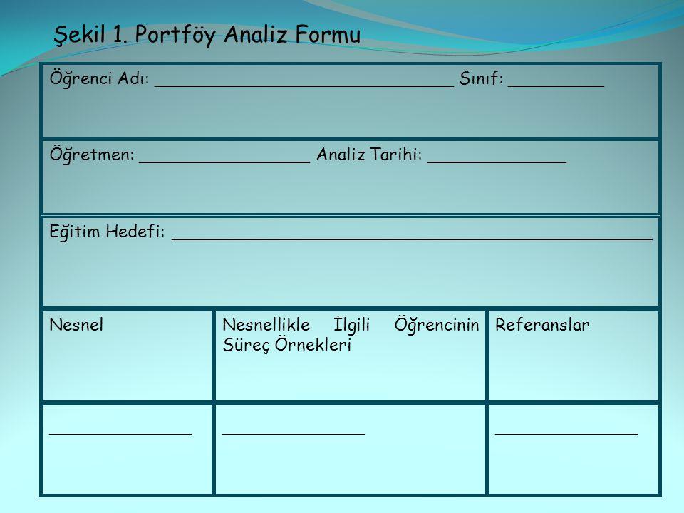 Şekil 1. Portföy Analiz Formu