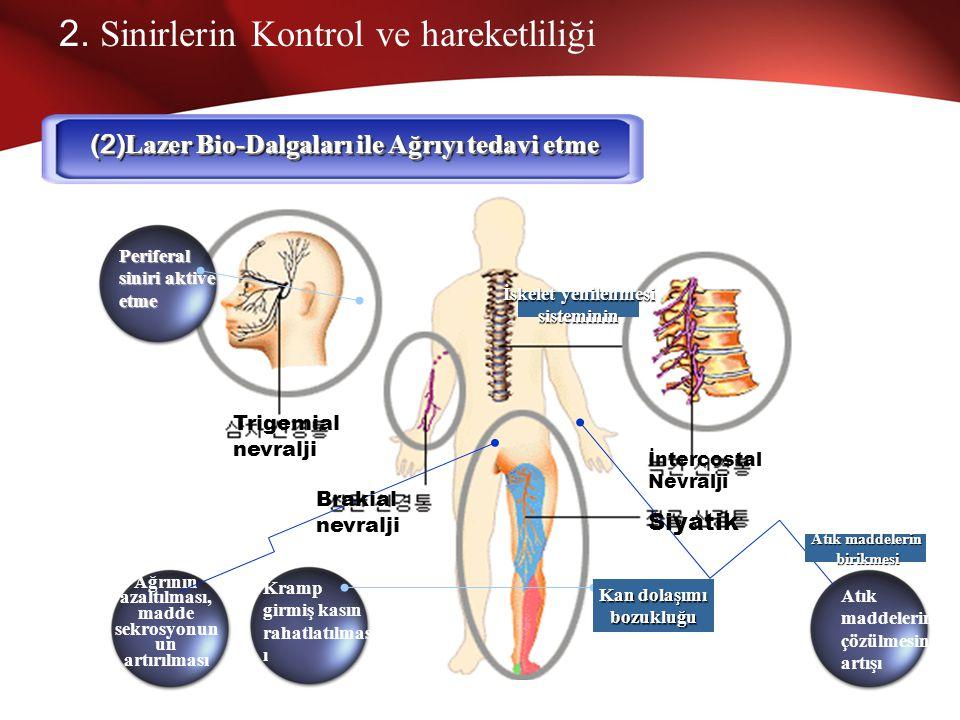 (2)Lazer Bio-Dalgaları ile Ağrıyı tedavi etme