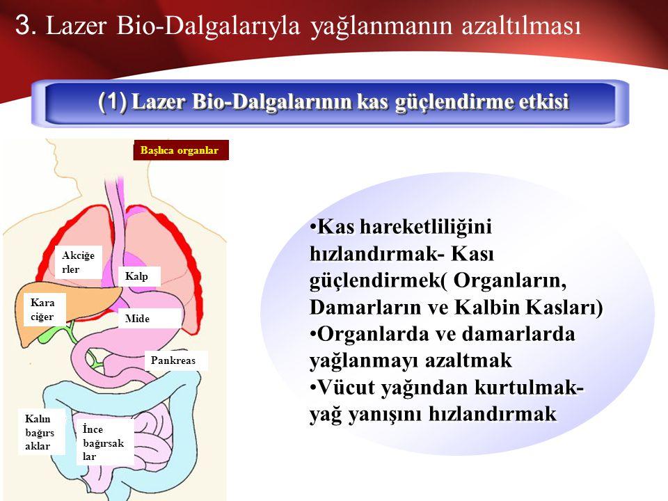 (1) Lazer Bio-Dalgalarının kas güçlendirme etkisi
