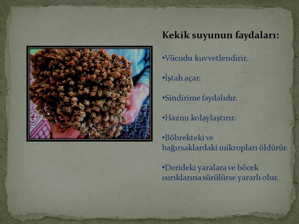 Kekik suyunun faydaları: