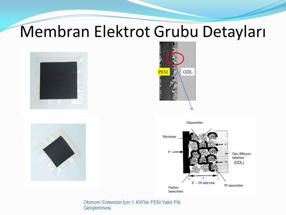Membran Elektrot Grubu Detayları