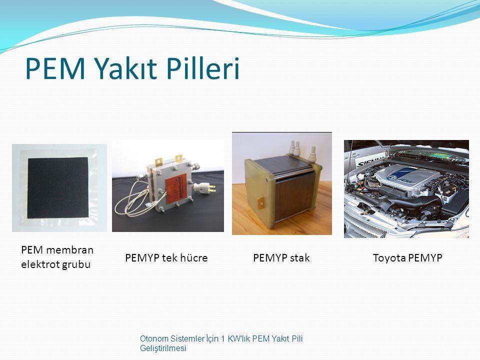 PEM Yakıt Pilleri PEM membran elektrot grubu PEMYP tek hücre