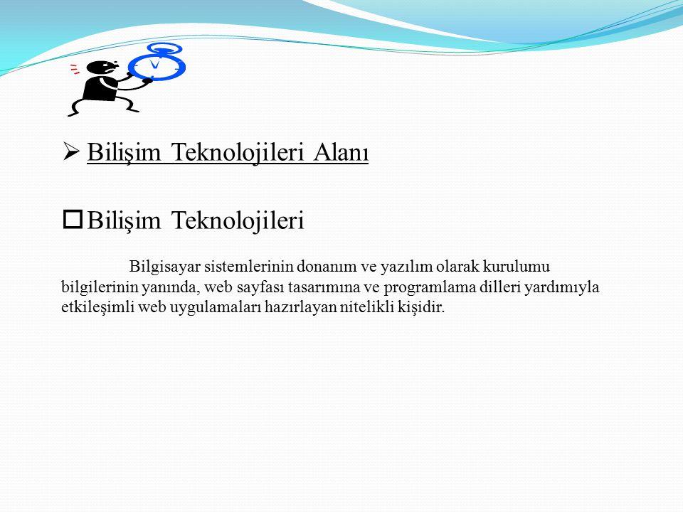Bilişim Teknolojileri Alanı Bilişim Teknolojileri