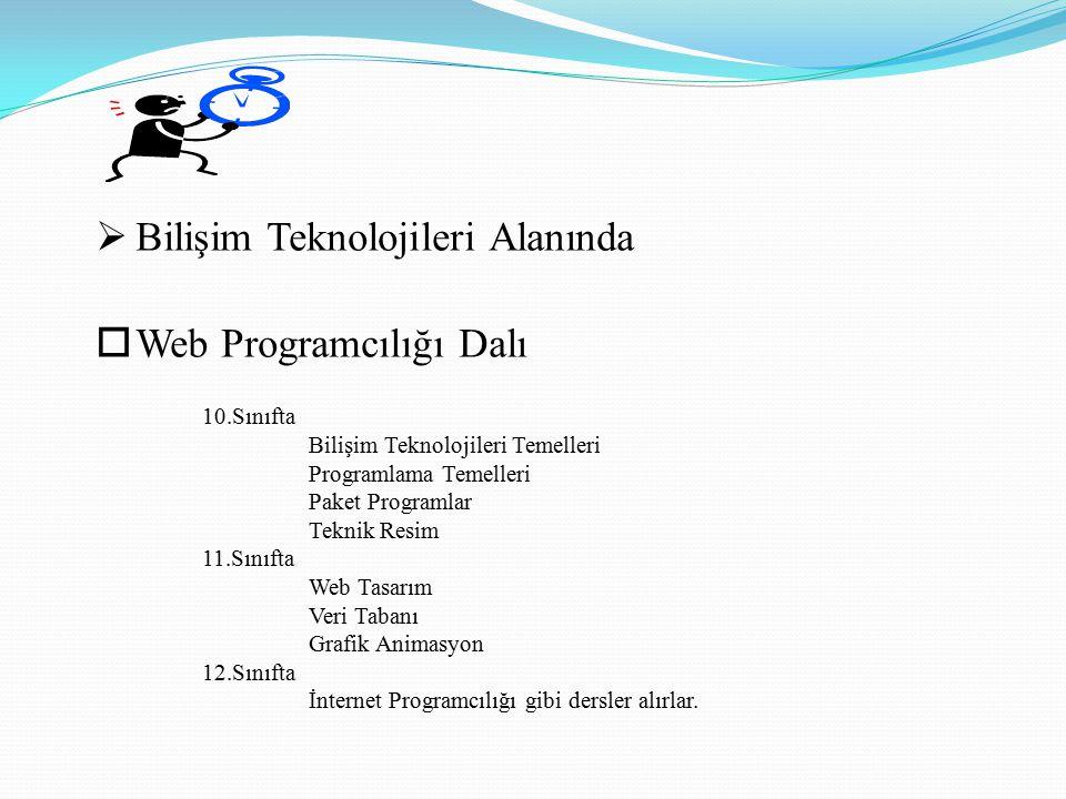 Bilişim Teknolojileri Alanında Web Programcılığı Dalı