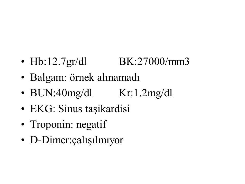 Hb:12.7gr/dl BK:27000/mm3 Balgam: örnek alınamadı. BUN:40mg/dl Kr:1.2mg/dl. EKG: Sinus taşikardisi.