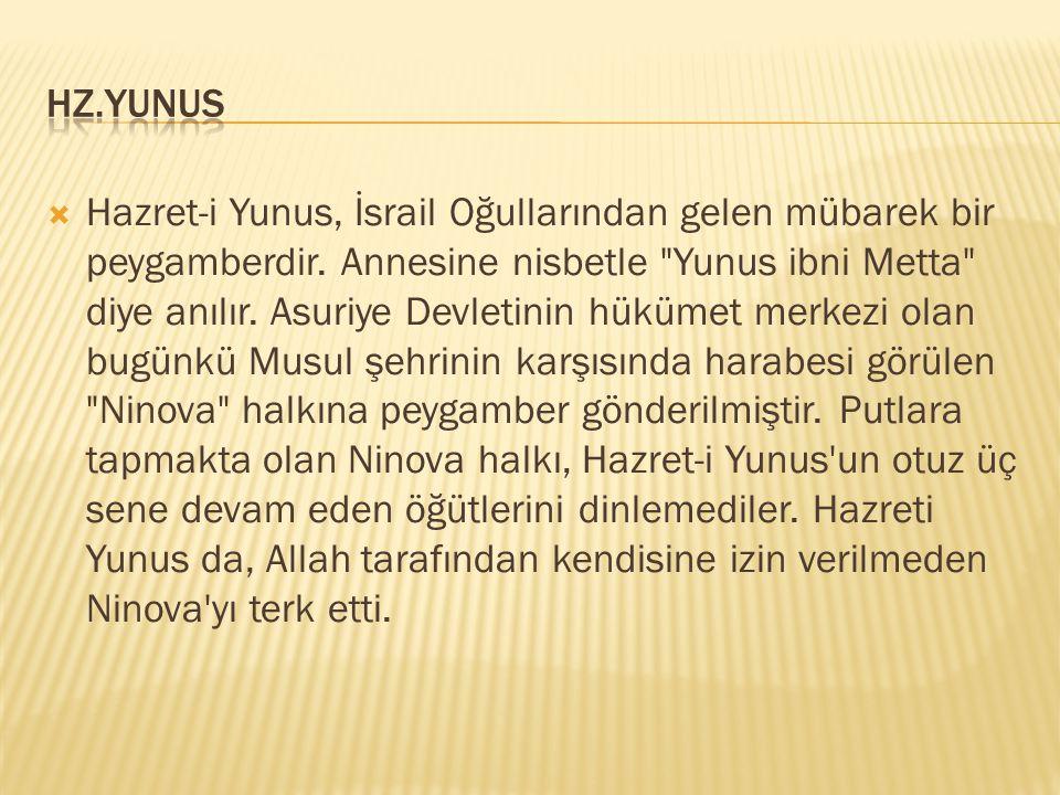 HZ.YUNUS