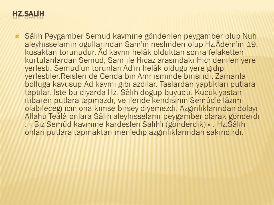 HZ.SALİH