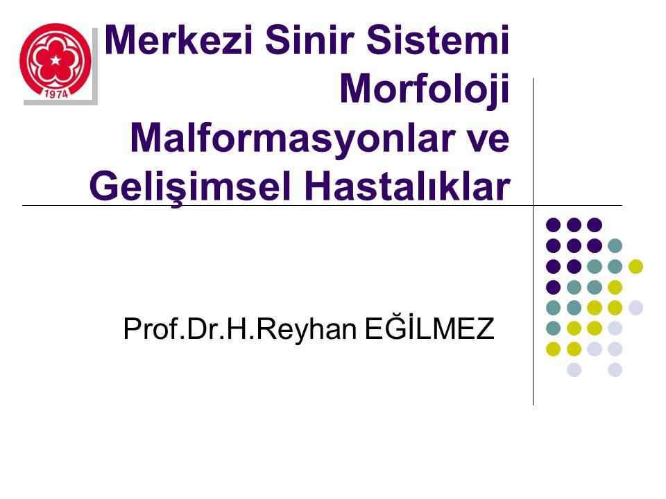 Prof.Dr.H.Reyhan EĞİLMEZ