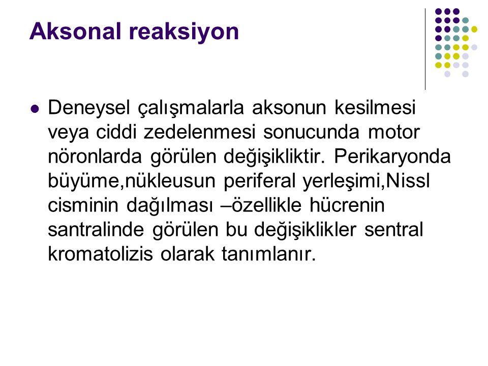 Aksonal reaksiyon