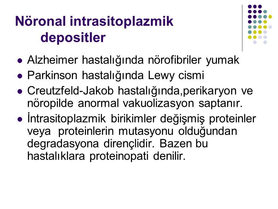 Nöronal intrasitoplazmik depositler