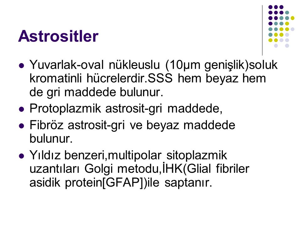 Astrositler Yuvarlak-oval nükleuslu (10µm genişlik)soluk kromatinli hücrelerdir.SSS hem beyaz hem de gri maddede bulunur.
