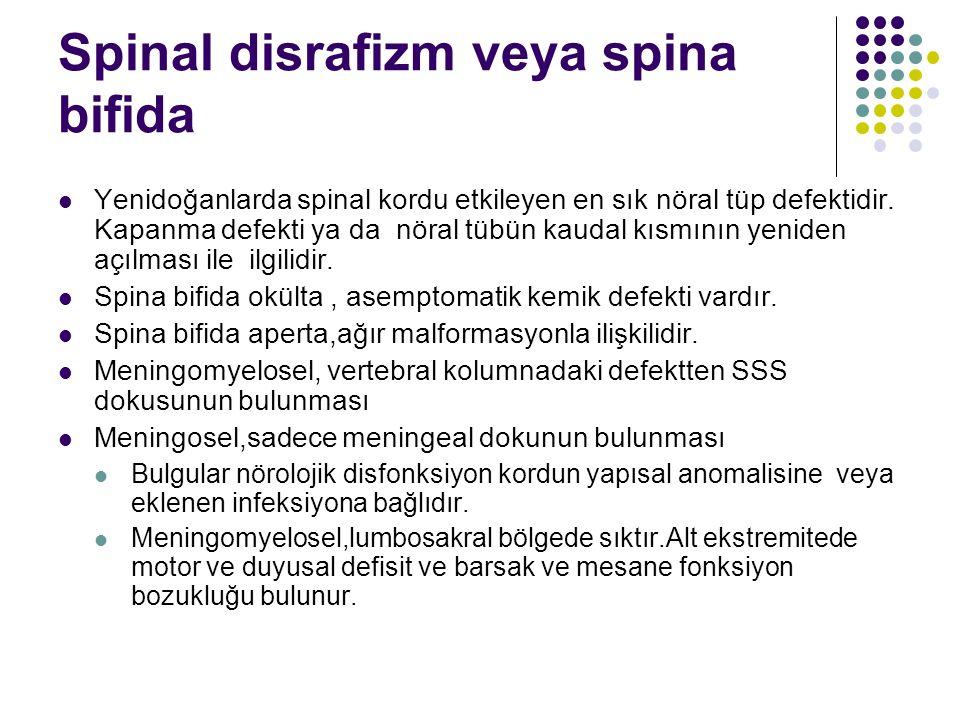 Spinal disrafizm veya spina bifida