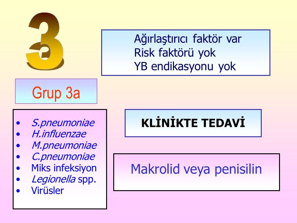 Makrolid veya penisilin