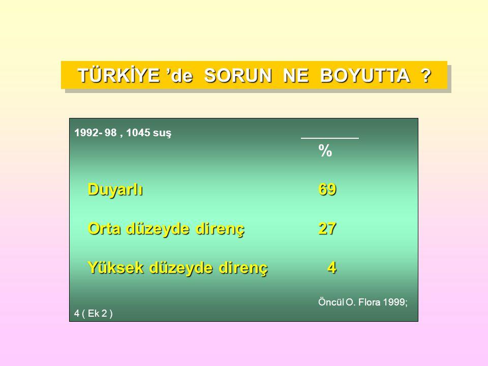 TÜRKİYE 'de SORUN NE BOYUTTA