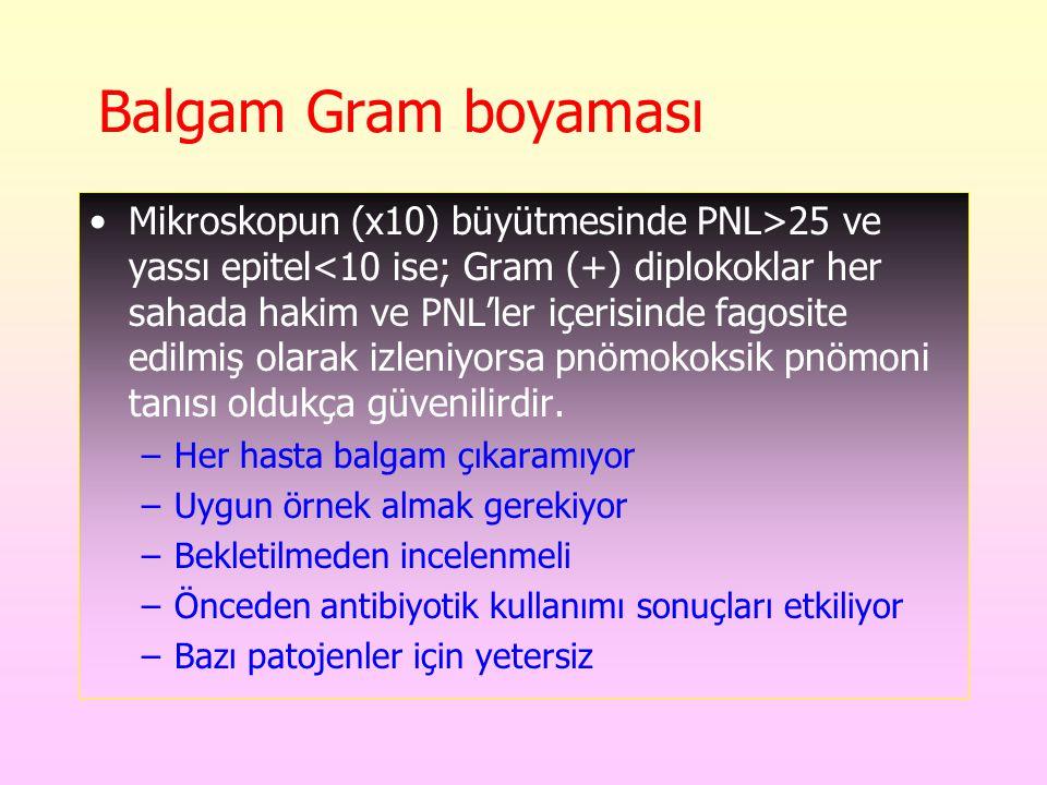 Balgam Gram boyaması