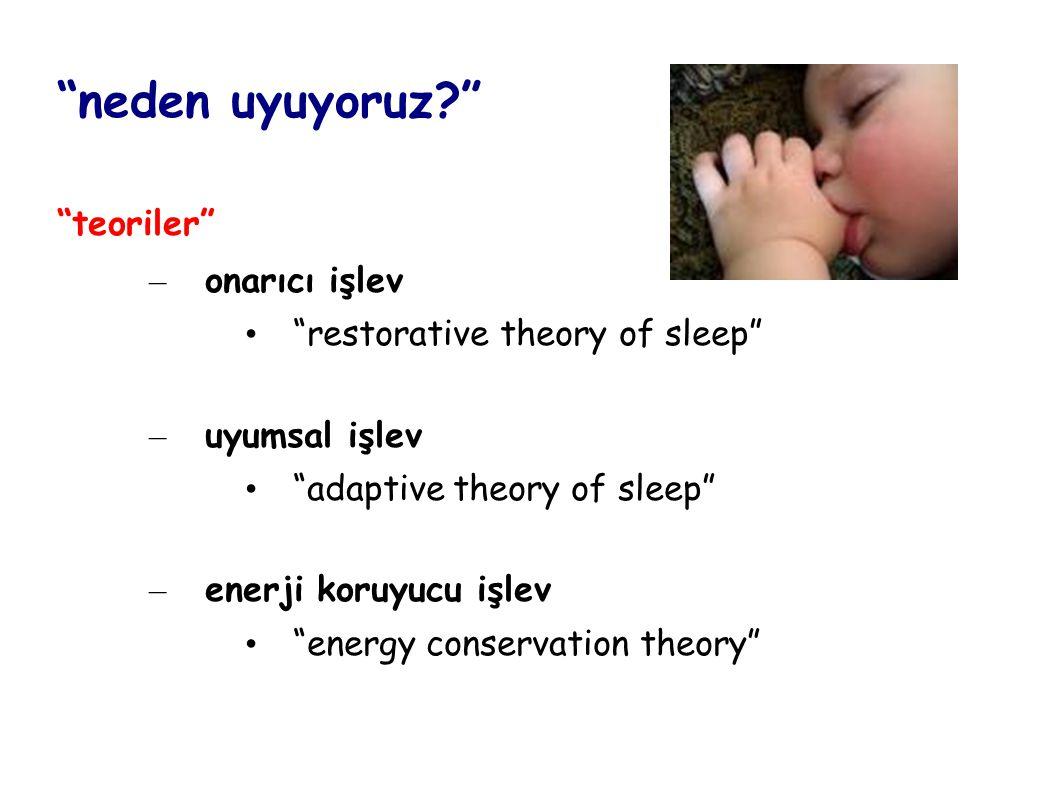 neden uyuyoruz teoriler onarıcı işlev