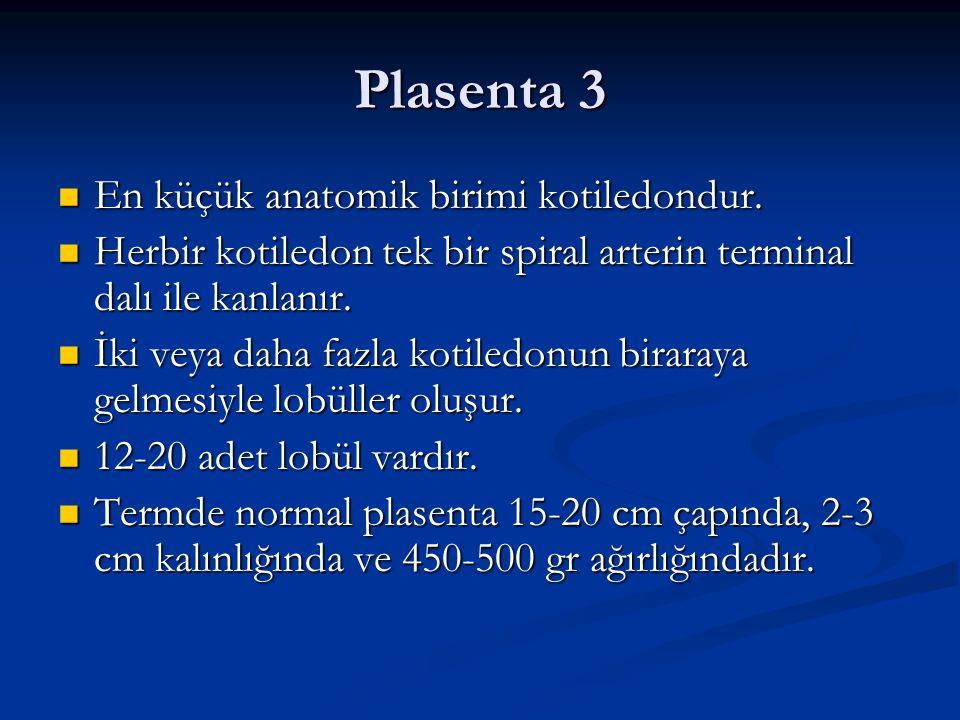 Plasenta 3 En küçük anatomik birimi kotiledondur.
