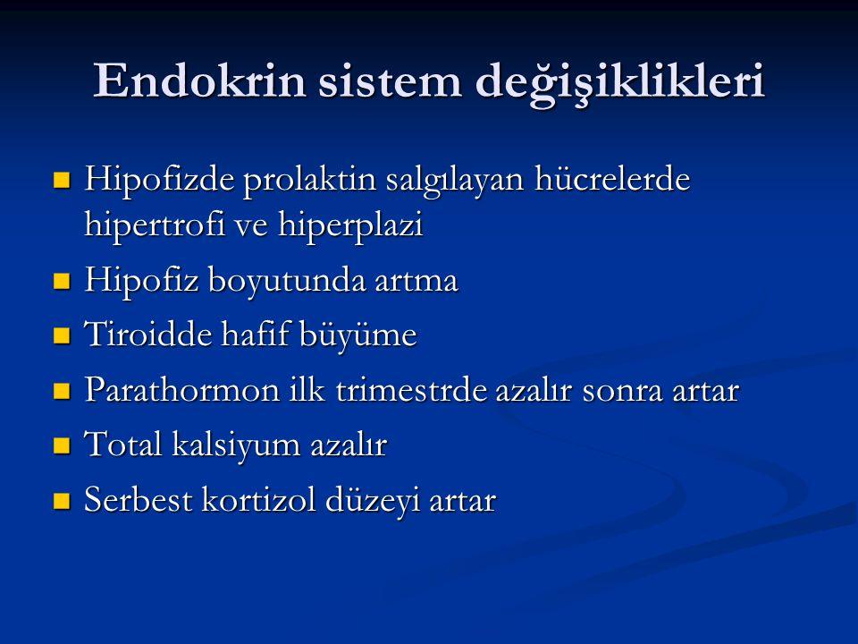 Endokrin sistem değişiklikleri