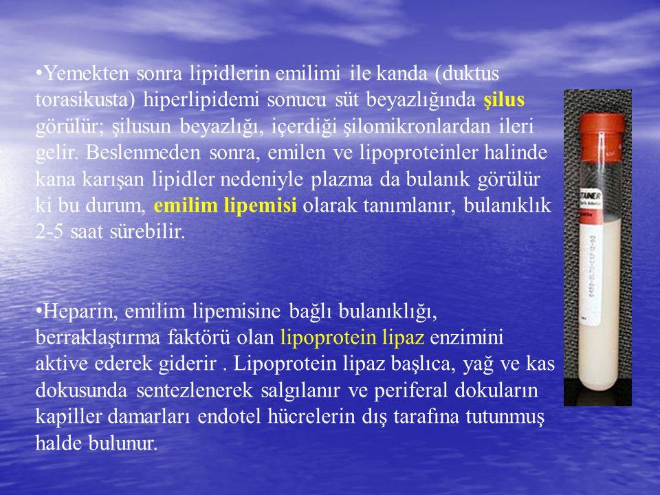 Yemekten sonra lipidlerin emilimi ile kanda (duktus torasikusta) hiperlipidemi sonucu süt beyazlığında şilus görülür; şilusun beyazlığı, içerdiği şilomikronlardan ileri gelir. Beslenmeden sonra, emilen ve lipoproteinler halinde kana karışan lipidler nedeniyle plazma da bulanık görülür ki bu durum, emilim lipemisi olarak tanımlanır, bulanıklık 2-5 saat sürebilir.