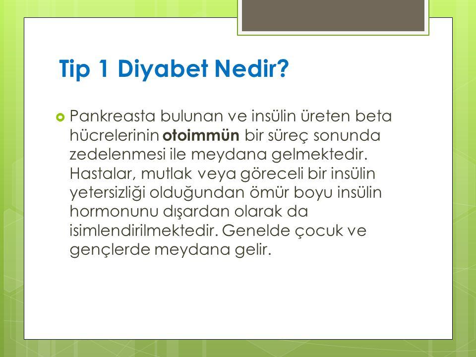 Tip 1 Diyabet Nedir