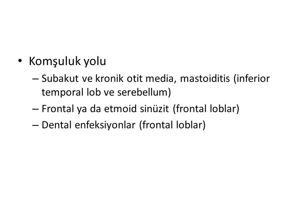 Komşuluk yolu Subakut ve kronik otit media, mastoiditis (inferior temporal lob ve serebellum) Frontal ya da etmoid sinüzit (frontal loblar)