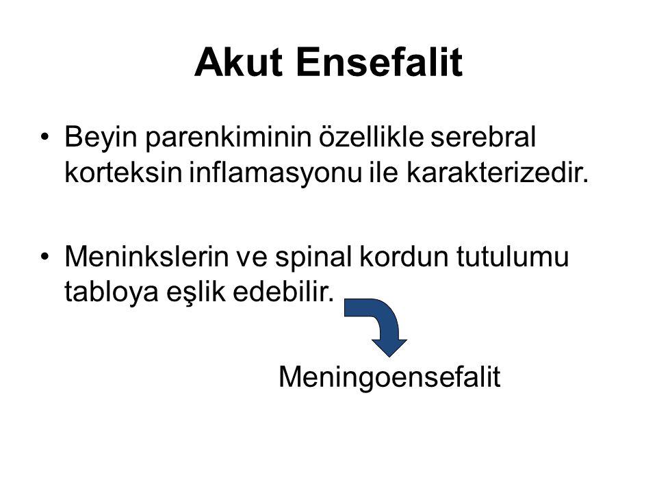 Akut Ensefalit Beyin parenkiminin özellikle serebral korteksin inflamasyonu ile karakterizedir.