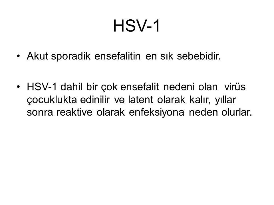 HSV-1 Akut sporadik ensefalitin en sık sebebidir.