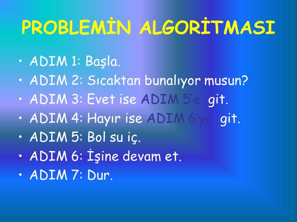 PROBLEMİN ALGORİTMASI