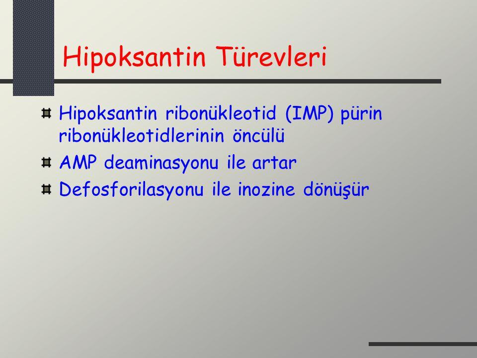 Hipoksantin Türevleri