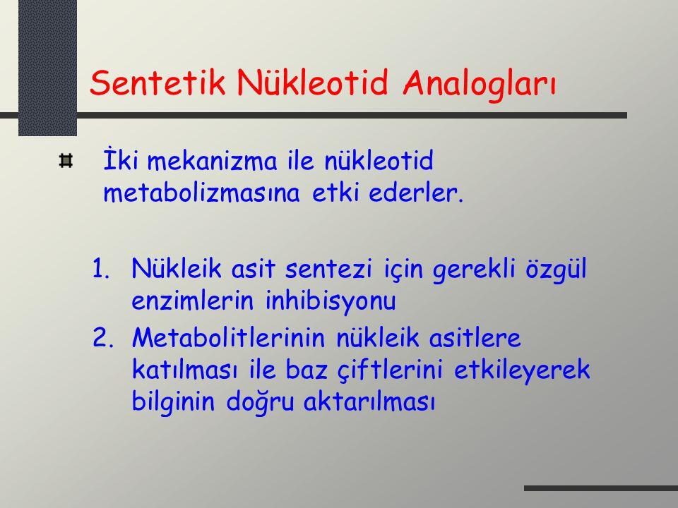Sentetik Nükleotid Analogları