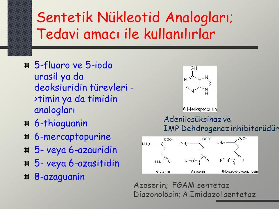 Sentetik Nükleotid Analogları; Tedavi amacı ile kullanılırlar