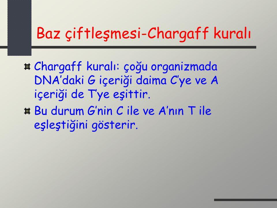 Baz çiftleşmesi-Chargaff kuralı