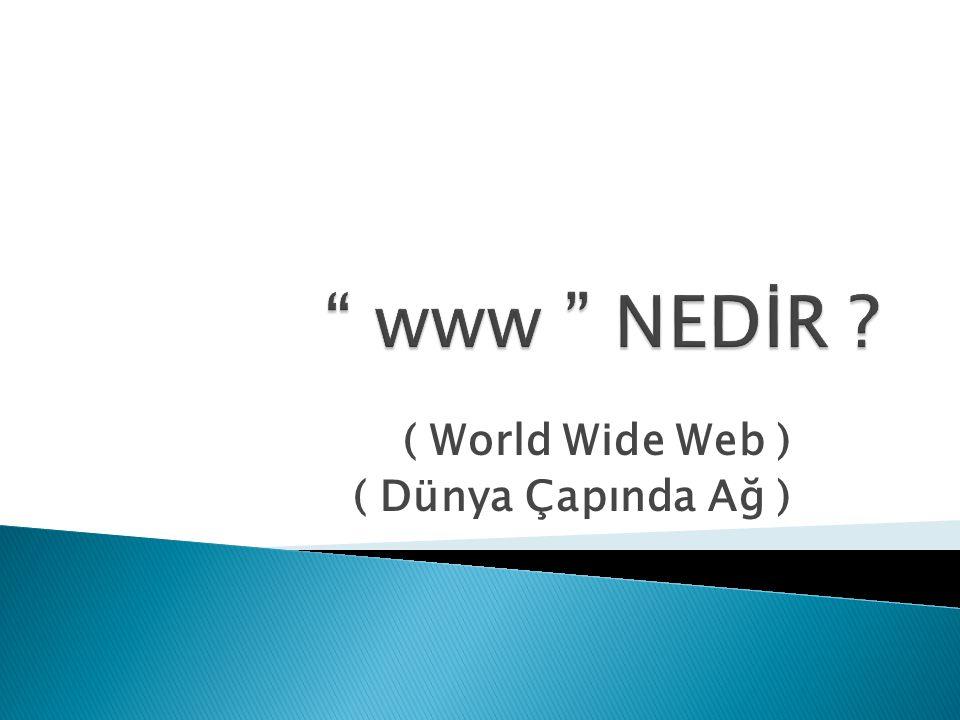 ( World Wide Web ) ( Dünya Çapında Ağ )