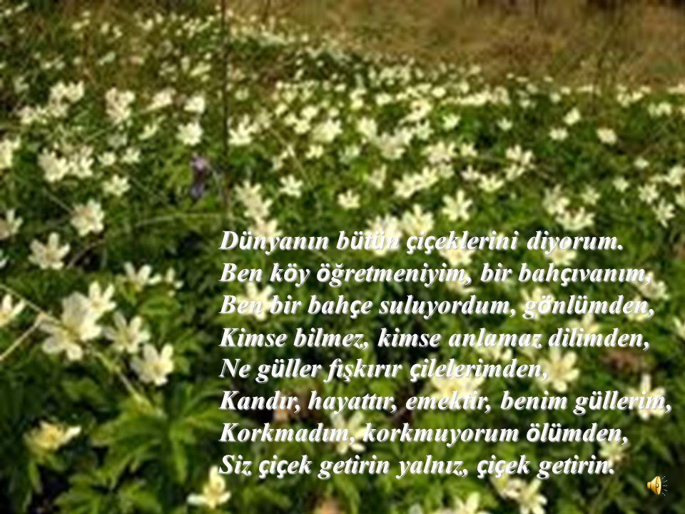 Dünyanın bütün çiçeklerini diyorum.