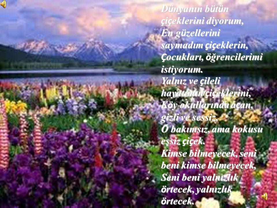Dünyanın bütün çiçeklerini diyorum,