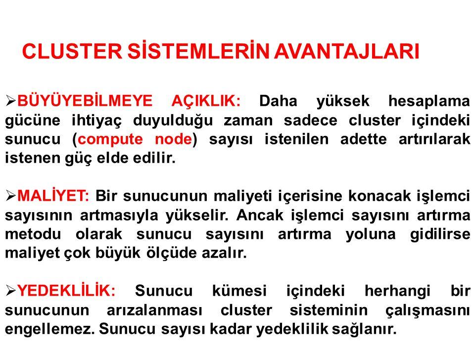 CLUSTER SİSTEMLERİN AVANTAJLARI