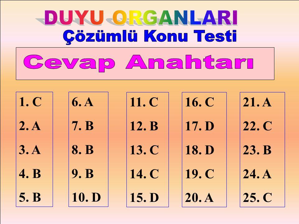 DUYU ORGANLARI Çözümlü Konu Testi Cevap Anahtarı 1. C 2. A 3. A 4. B