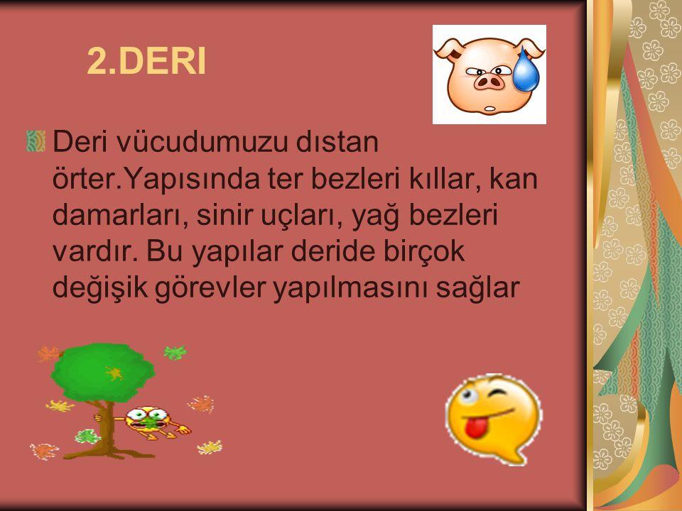 2.DERI