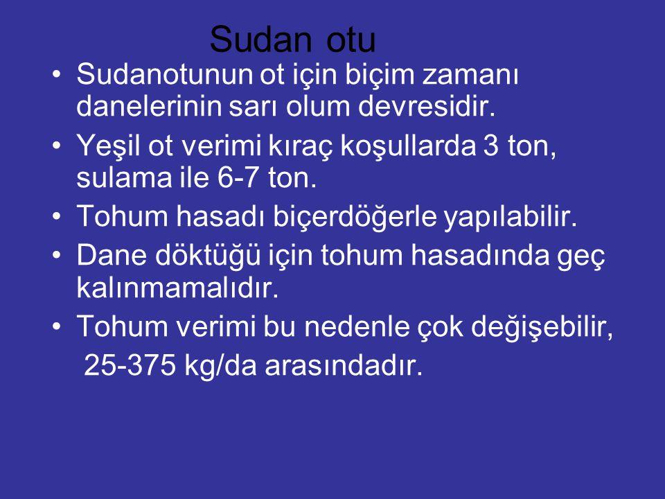 Sudan otu Sudanotunun ot için biçim zamanı danelerinin sarı olum devresidir. Yeşil ot verimi kıraç koşullarda 3 ton, sulama ile 6-7 ton.