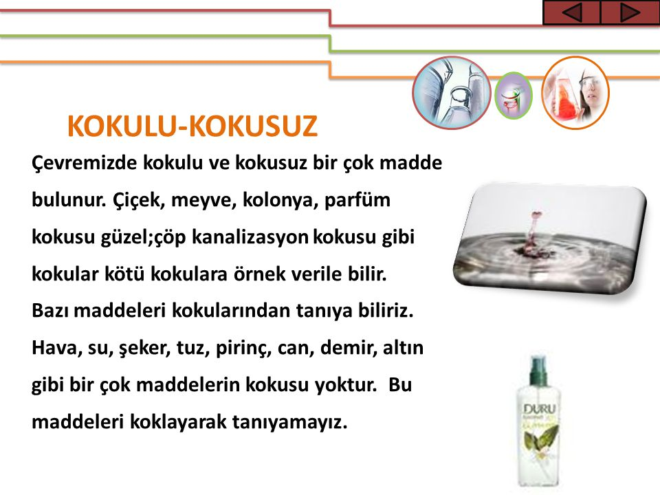 KOKULU-KOKUSUZ