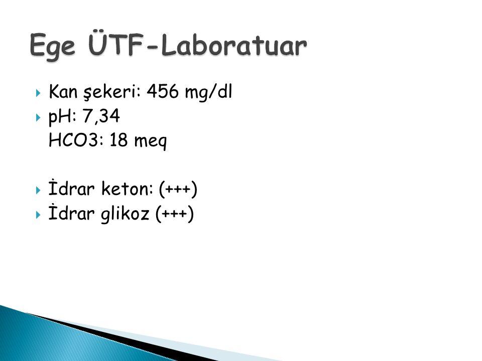 Ege ÜTF-Laboratuar Kan şekeri: 456 mg/dl pH: 7,34 HCO3: 18 meq