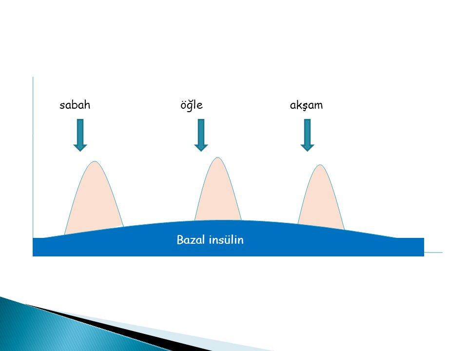 sabah öğle akşam Bazal insülin