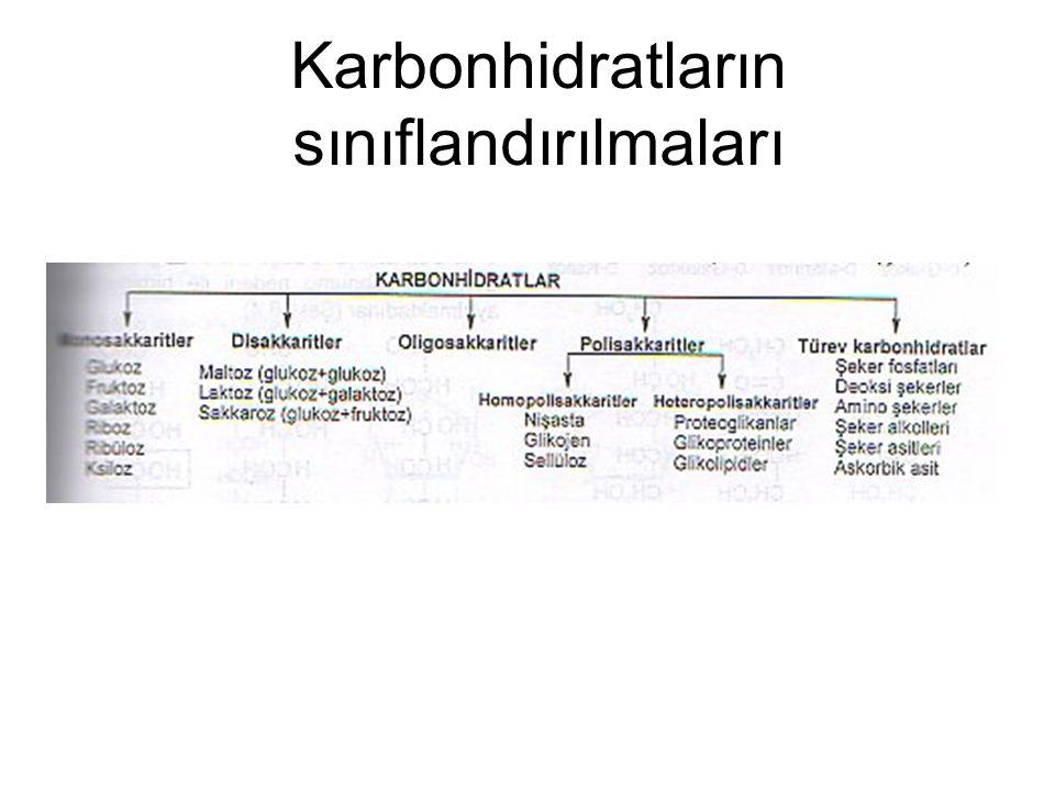 Karbonhidratların sınıflandırılmaları
