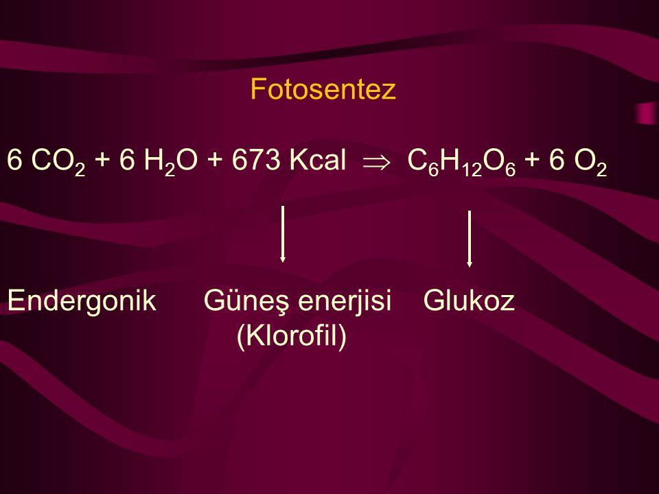 Fotosentez 6 CO2 + 6 H2O + 673 Kcal  C6H12O6 + 6 O2.