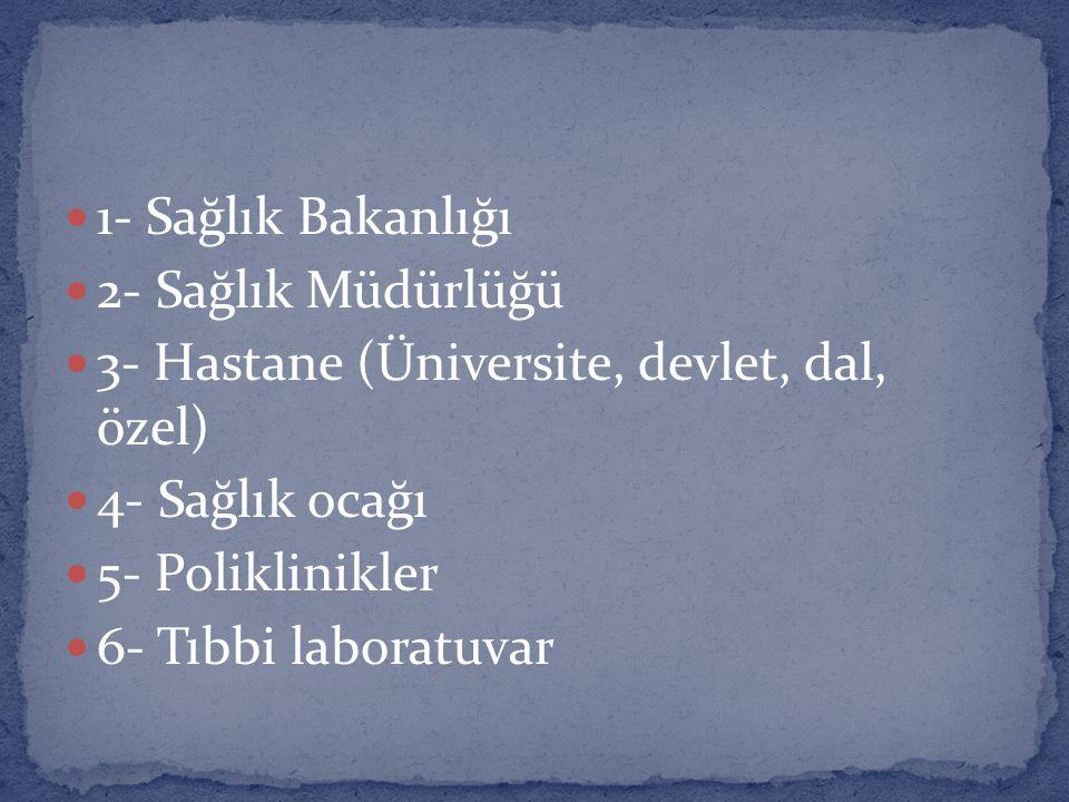 1- Sağlık Bakanlığı 2- Sağlık Müdürlüğü. 3- Hastane (Üniversite, devlet, dal, özel) 4- Sağlık ocağı.