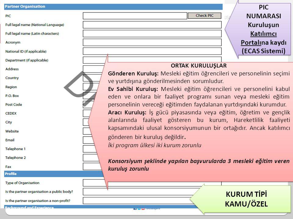Kuruluşun Katılımcı Portalına kaydı