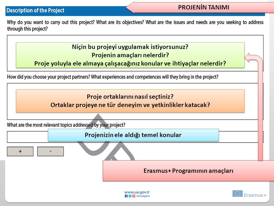 Niçin bu projeyi uygulamak istiyorsunuz Projenin amaçları nelerdir