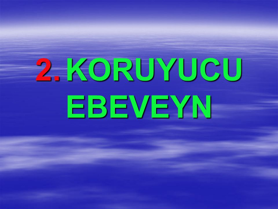 2. KORUYUCU EBEVEYN