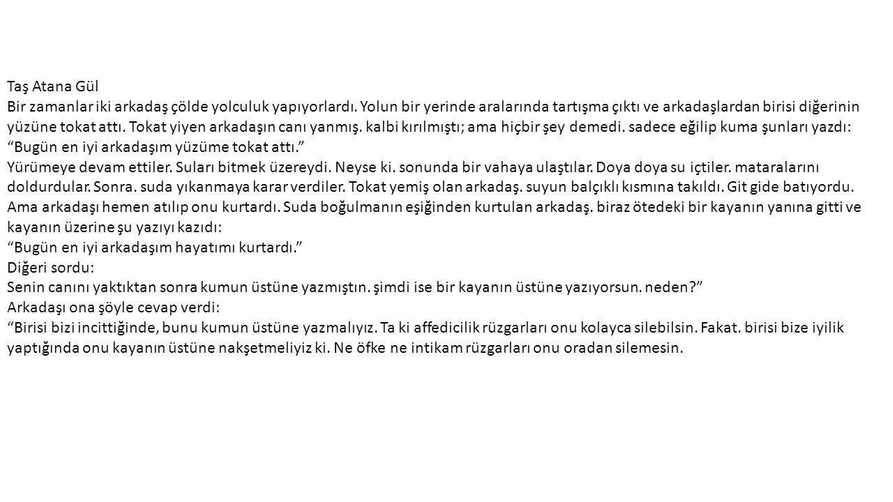 Taş Atana Gül
